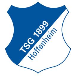 1413537050_fc-hoffenheim
